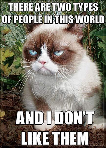 Chu meo cau co trong meme noi tieng 'Grumpy Cat' da qua doi hinh anh 2