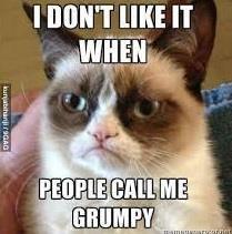 Chu meo cau co trong meme noi tieng 'Grumpy Cat' da qua doi hinh anh 5