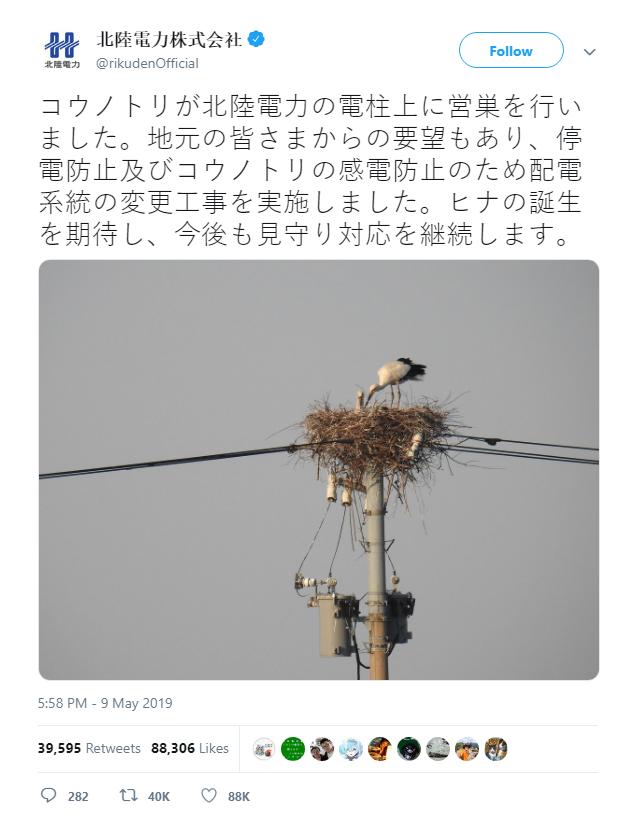 Tách đường dây cao thế chỉ vì 1 tổ cò, điện lực Nhật Bản được internet tuyên dương - Ảnh 2.