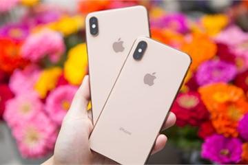 Liệu iPhone Pro có phải viên gạch còn thiếu trong dải sản phẩm Apple?
