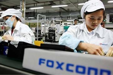 Sáng lập Foxconn khuyên Apple di dời dây chuyền iPhone