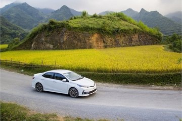 Không chỉ Vios, Toyota cũng giảm giá sốc Corolla Altis