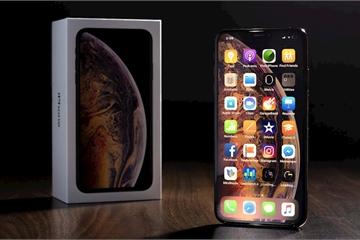 iPhone 11 sẽ sử dụng cùng tấm màn OLED với Samsung Galaxy S10 và Note 10 ?