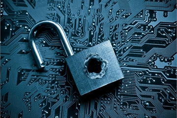 Hơn 400 lỗ hổng bảo mật đã được phát hiện thông qua nền tảng WhiteHub