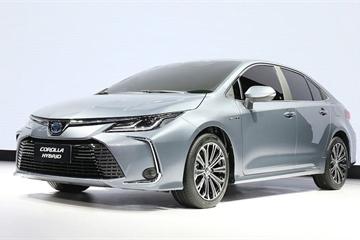 Toyota chưa vội bán Corolla Altis 2020 ở Việt Nam