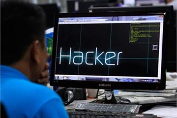 CyStack: Số website tại Việt Nam bị tấn công mạng giảm mạnh trong quý IV/2019