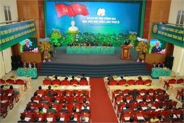 Đồng Nai đặt mục tiêu tiếp tục đổi mới, sắp xếp tổ chức bộ máy của hệ thống chính trị