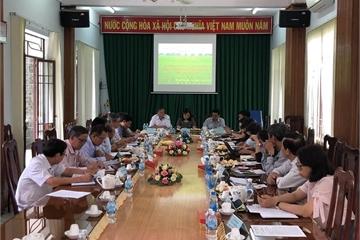 Khánh Hòa giúp tiết kiệm ngân sách khi hợp nhất các đơn vị sự nghiệp văn hóa, thông tin...