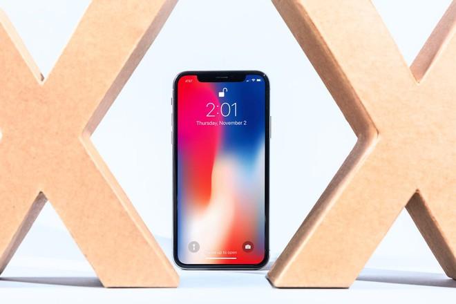 iPhone X chinh hang sap bi khai tu tai Viet Nam hinh anh 1