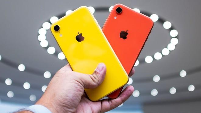 iPhone XR xuong gia duoi 11 trieu tai Viet Nam hinh anh 2