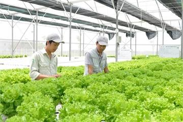 Bảy biện pháp bảo đảm bảo an ninh, an toàn cơ sở dữ liệu quốc gia về trồng trọt