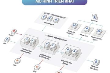 Doanh nghiệp Việt - Sai lầm khi chưa thực sự chú trọng đến việc bảo vệ website