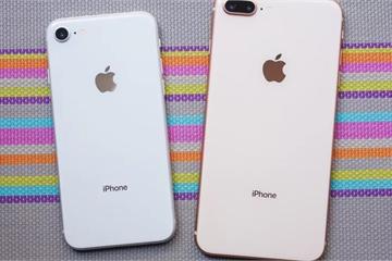 """Không phải iPhone 9 giá rẻ, """"iPhone 9 Plus"""" mới là chiếc """"iPhone quốc dân"""" mà người Việt chúng ta tìm kiếm"""