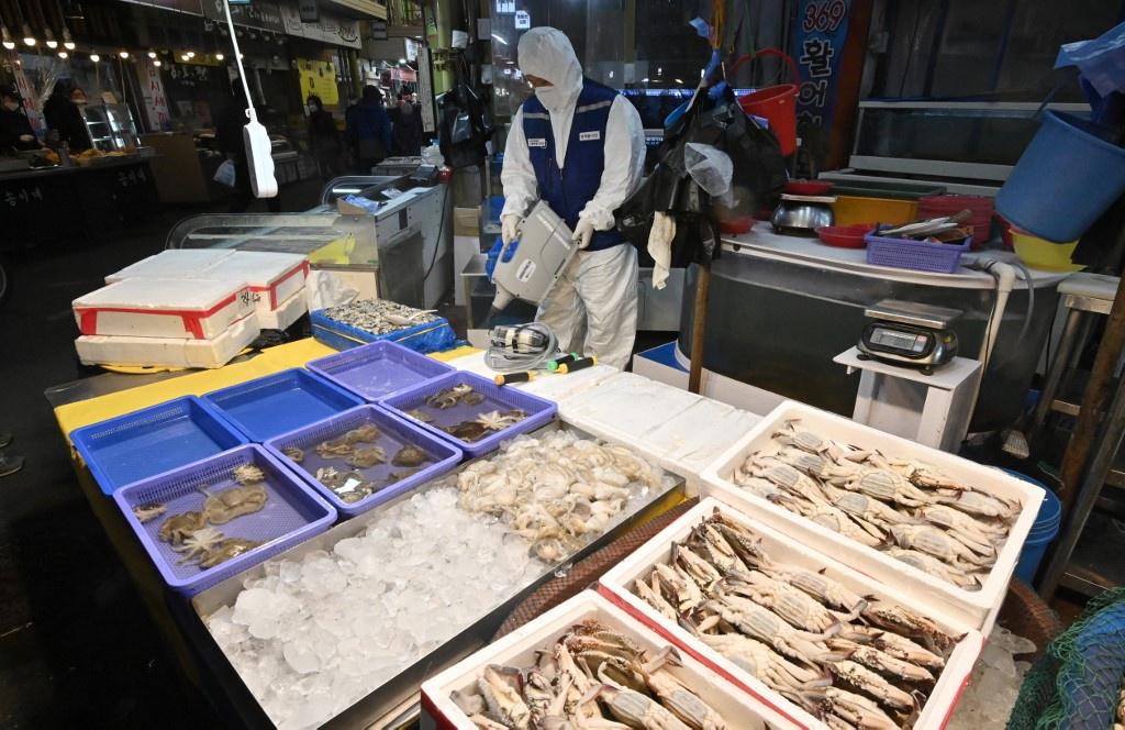 Nguoi dan Han Quoc xep hang dai mua khau trang ngua nhiem virus corona hinh anh 6 Khau_trang_Han_Quoc_11_AFP.jpg