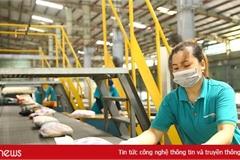 Bộ TT&TT: Doanh nghiệp bưu chính cần chú trọng ứng dụng công nghệ số để hạn chế tiếp xúc