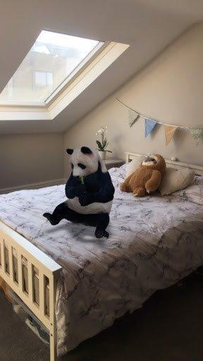 b1-danh-sach-dong-vat-3d-animals-google-bang-tieng-anh-day-du.jpg