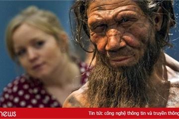 Phát hiện mới về quá trình tiến hóa của con người