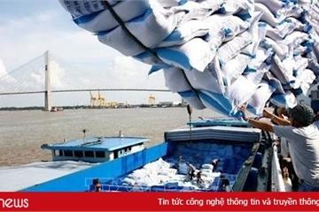 Mở hệ thống đăng ký tờ khai gạo tồn tại cảng trên hệ thống hải quan điện tử từ 25/4