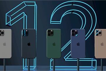 Apple lùi lịch sản xuất iPhone 5G