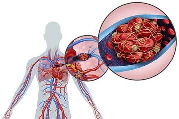 Không chỉ 'thích' phổi, virus corona mới còn tấn công hàng loạt nội tạng