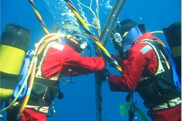 Tuyến cáp biển IA gặp sự cố trên hai nhánh, hơn 1 tháng nữa mới khôi phục hoàn toàn