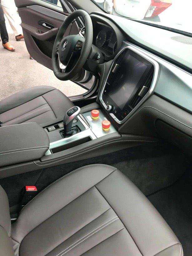 VinFast bất ngờ đưa xe SUV Lux V8 về Việt Nam - ảnh 3