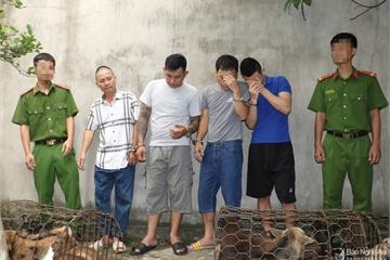 Triệt phá ổ nhóm trộm nửa tấn chó mỗi đêm, thu 1 tấn tang vật và nhiều vũ khí