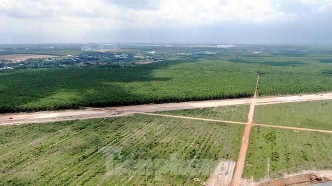 Cận cảnh khu tái định cư sân bay Long Thành rộng 280 ha - ảnh 16