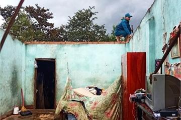 Lâm Đồng: Lốc xoáy bay rạp tiệc tân gia, hàng tấn sầu riêng rụng tơi tả