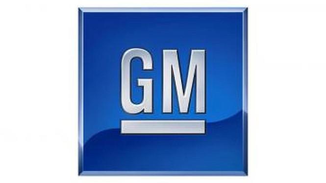 Các nhà sản xuất ôtô lớn đang sở hữu thương hiệu nào? - ảnh 5