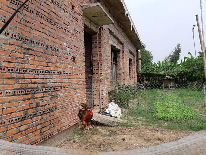 Cận cảnh trường học trăm tỷ biến thành trại gà hoang hoá - ảnh 5