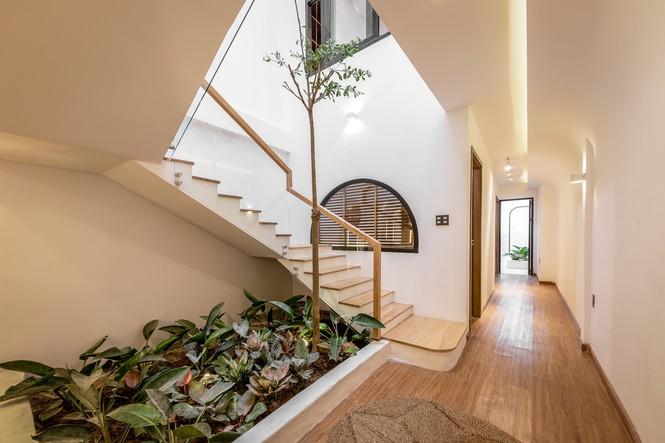 Chiêm ngưỡng ngôi nhà có thiết kế độc đáo ở vùng quê miền Tây - ảnh 2