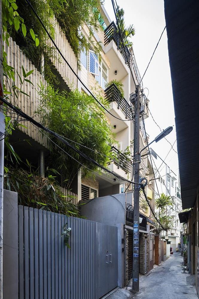 'Nhà tre' như rừng cây trong hẻm Sài Gòn, vừa tắm vừa nghe chim hót - ảnh 1