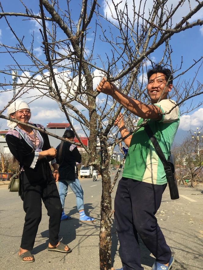 Lên tận Lai Châu buôn đào rừng, thanh niên lãi cả trăm triệu đồng - ảnh 7