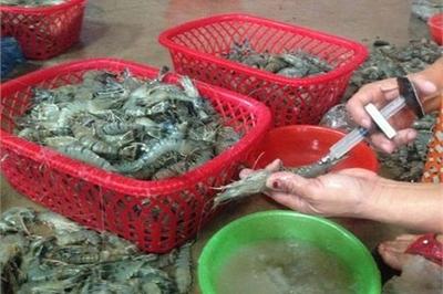Cách đơn giản nhận biết tôm bơm tạp chất thạch rau câu