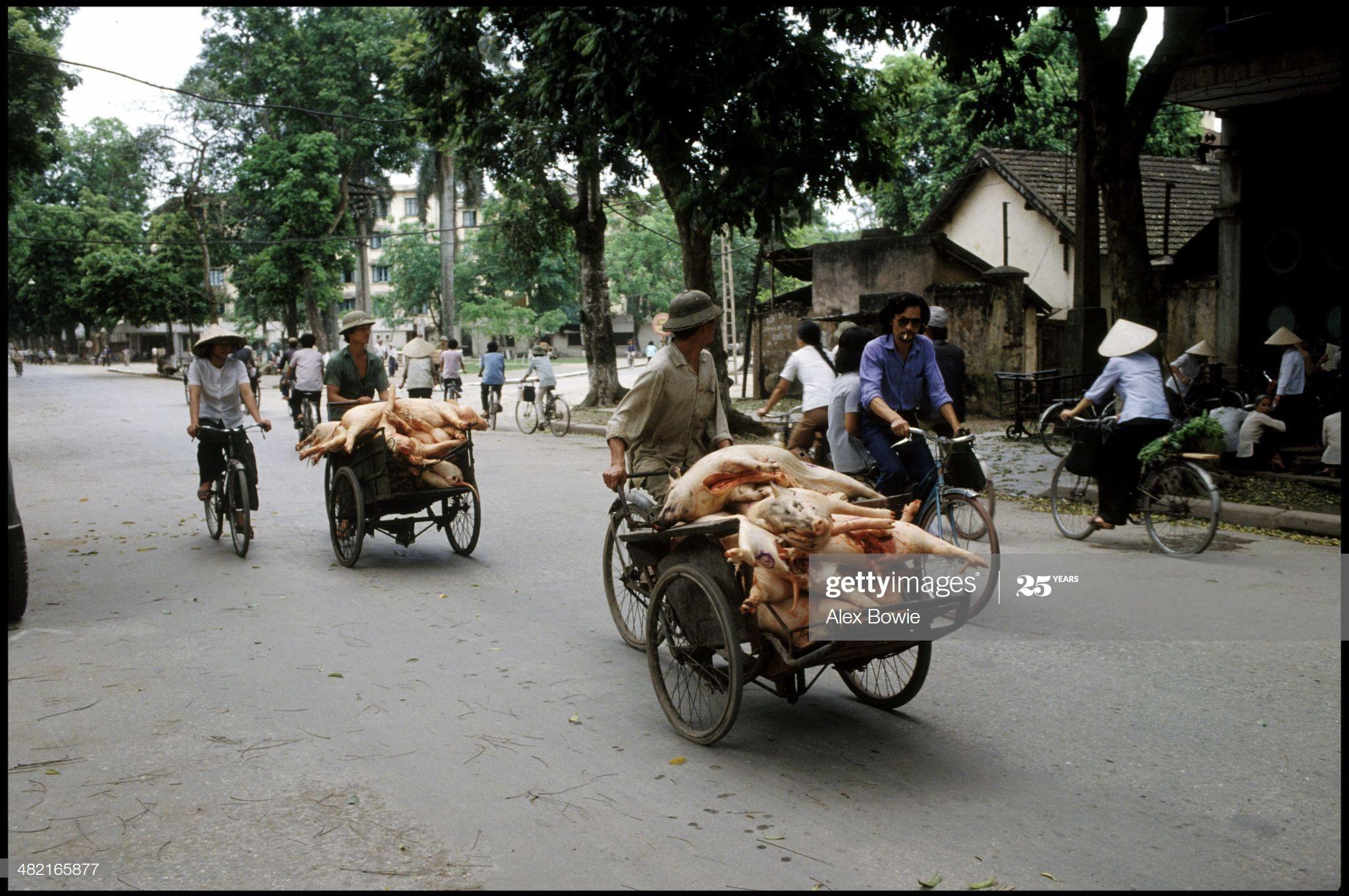 Tron mat canh cho lon bang xe dap o Viet Nam thap nien 1990-Hinh-5