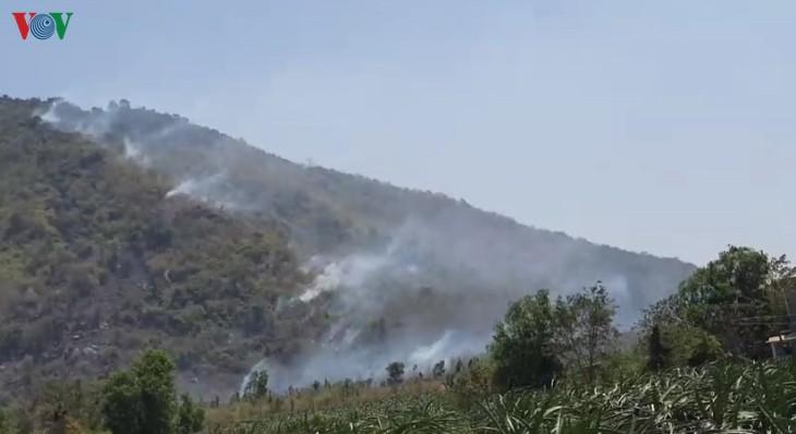 Cháy rừng trên đỉnh Tà Cú, 6 tiếng mới dập tắt