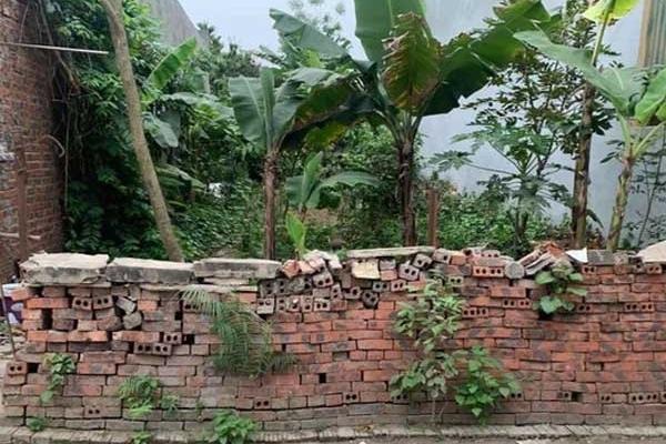'Về quê nuôi cá và trồng rau', giấc mơ xa vời với người trẻ khi giá đất ở quê đắt ngang ngửa Hà Nội