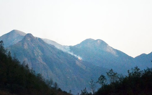 Hình ảnh vụ cháy rừng ở huyện Sa Pa (Lào Cai) - ảnh 2