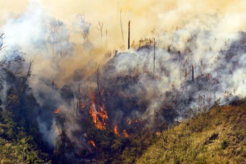 Hình ảnh vụ cháy rừng ở huyện Sa Pa (Lào Cai) - ảnh 1