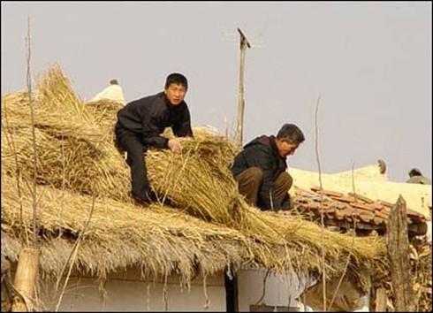 Triều Tiên bắt đầu áp dụng 'chủ nghĩa tư bản' cho nông dân - ảnh 2