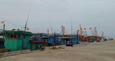 Hai tàu cá Hà Tĩnh cùng 5 ngư dân đang mất tích trên biển - ảnh 1