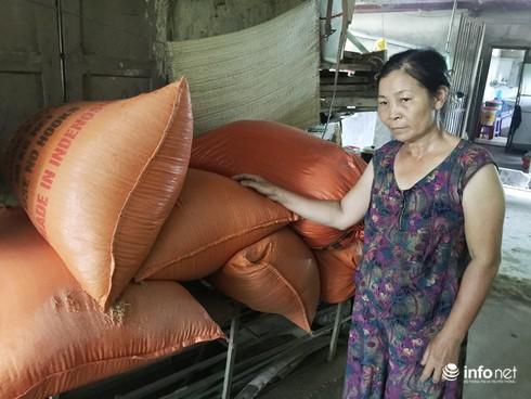 Hà Tĩnh: Mất mùa nặng nề, 40 vạn dân có nguy cơ