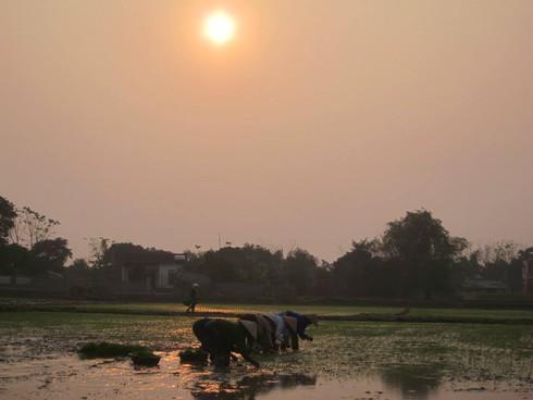 Cuộc sống mến yêu qua mắt nhìn của trẻ em nông thôn Việt Nam - ảnh 1