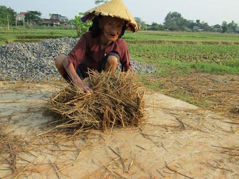 Cuộc sống mến yêu qua mắt nhìn của trẻ em nông thôn Việt Nam - ảnh 9