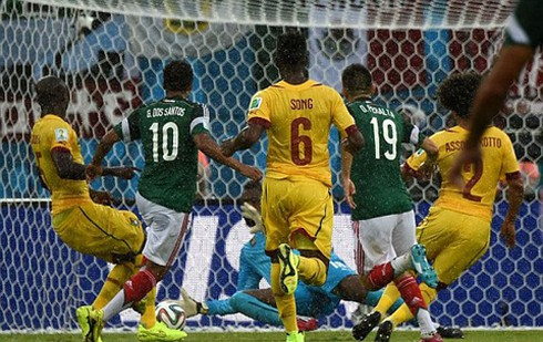 Tin World Cup mới nhất 14/6: Rùa tiên tri dự đoán hòa cho Anh-Italy - ảnh 1