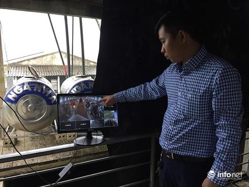 Hà Tĩnh: Từ bỏ lương nghìn đô, thạc sĩ về quê chăn lợn kiếm tiền tỉ mỗi năm - ảnh 3