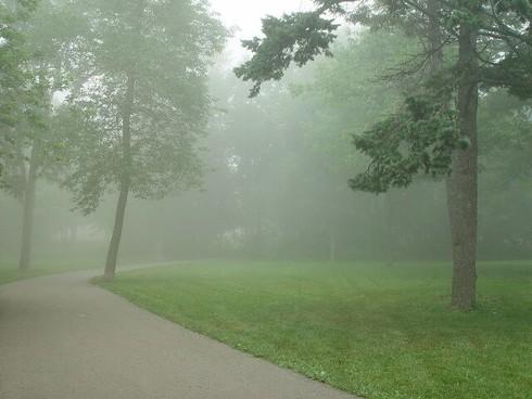 Dự báo thời tiết ngày 10/12: Sương mù bao vây nhiều tỉnh thành - ảnh 1