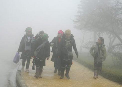 Dự báo thời tiết ngày 13/1: Rét tăng cường, có mưa - ảnh 1