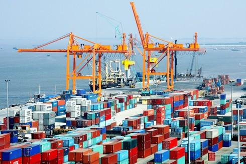 Khai thác cảng biển: Hiệu quả còn thấp - ảnh 1